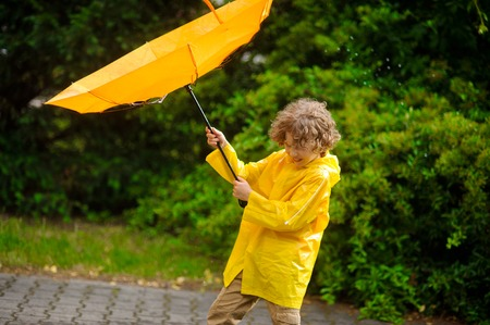 gust: The boy of 8-9 years with effort holds an umbrella from windflaws. He has closed eyes from tension and tries to resist standing. Behind the back of the boy magnificent green bush.