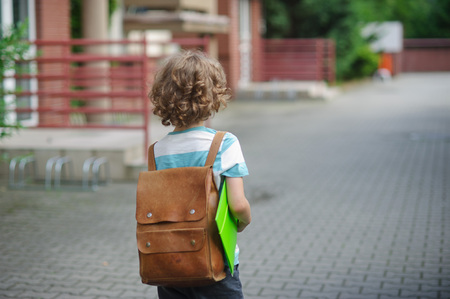 beginning school year: The schoolboy with a satchel on his shoulders and a folder in his hand goes to school. A warm day of autumn. View from the back.