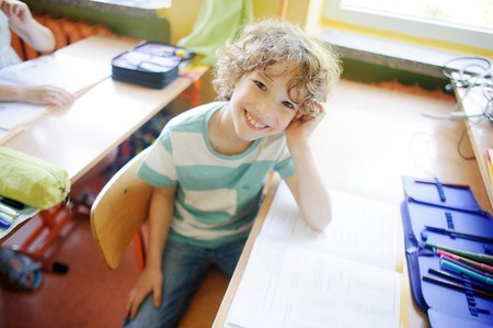 pensil: The fair-haired school student sits at desk in a class. On a school desk the open textbook and a pensil box. The laddie has an excellent mood. He looks in the camera and smiles.