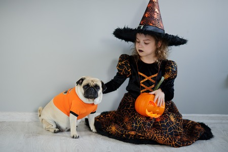 hallows: All Hallows Eve. Little girl in a suit of the evil sorcerer sits on a floor and irons an amusing pug. On a doggie have put on an orange sweater. The girl holds pumpkin. Friends are ready to Halloween. Stock Photo