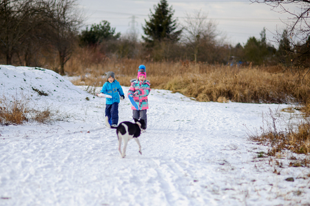 hardly: Two children, boy and girl, on winter walk with dog. Ground is hardly covered with the first snow. But children very much rejoice. In hands at them saucer sled. Against background of winter landscape.