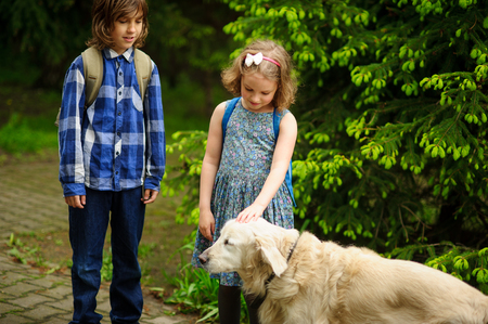 Little schoolchildren met on the way to school a large dog. The good-natured retriever drew the childrens attention. The girl fearlessly strokes the big dog. Reklamní fotografie