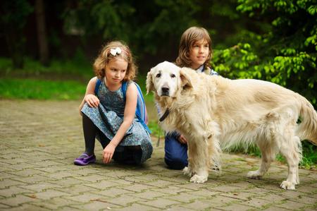 Little schoolchildren meet on the way to school a large dog. Good-natured retriever drew the children's attention. Children squatted down next to cute dog.