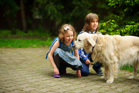 Little schoolchildren meet on the way to school a large dog. Good-natured retriever drew the childrens attention. Children squatted down next to cute dog. Reklamní fotografie