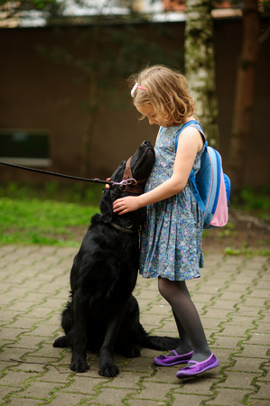 Little schoolgirl caressing a big black dog sitting on a leash. Dog trustfully nestles on the child. Reklamní fotografie