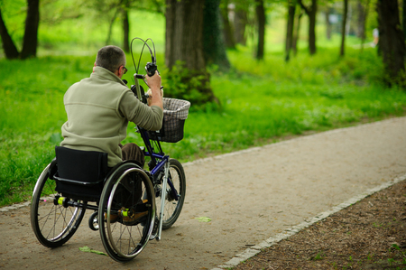 The man in a wheelchair on walk in the spring park. In a luggage carrier a small doggie. View from a back. Stock Photo