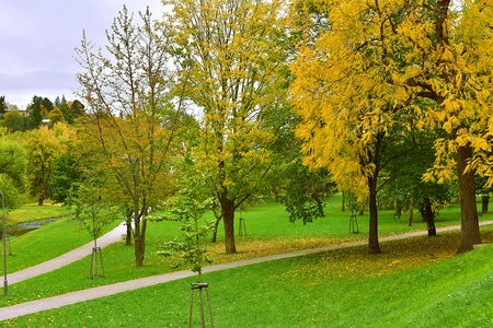 Foothpath and trees in autumn park in Cesky Krumlov