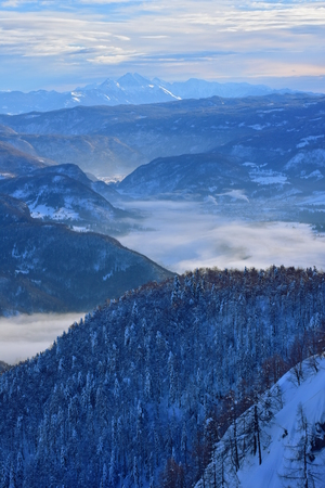 Foggy morning above the Bohinj lake. Winter landscape in Slovenia, Europe. Foto de archivo