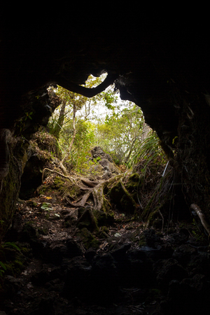 dark cave: Out of the Dark - Dark cave exit leading to a forest. Stock Photo