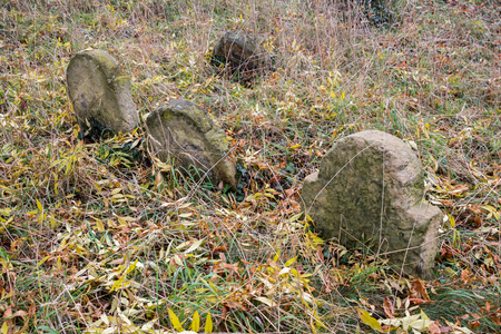 forgotten: Forgotten graves on ancient graveyard