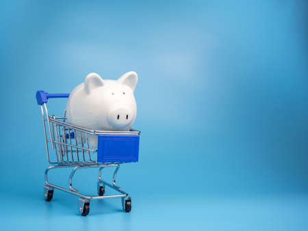 Piggy bank on a shopping mall cart On a blue background. Shopping concept.