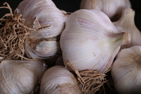 veda: Tops on the ground, some of garlic Stock Photo