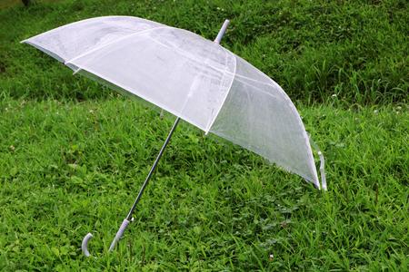 raincoat: green grass  white raincoat