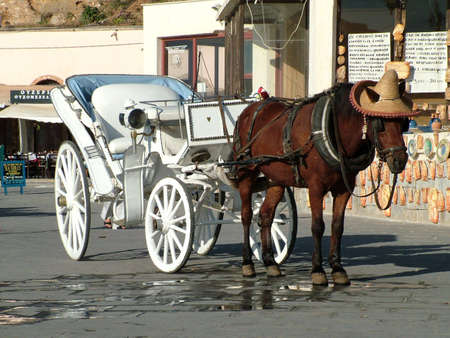 horse drawn carriage: A romantic horse drawn carriage in Chania Crete   Stock Photo