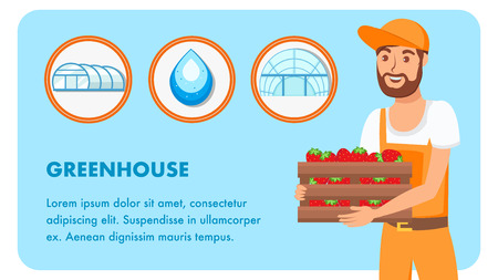 Man with Box of Strawberries Vector Banner Layout. Greenhouse Poster with Text Space. Drop of Clean Water in Circle. Summer harvest. Ripe Berries. Male Cartoon Character in Overall. Gardener, Farmer