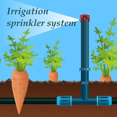 Cartoon-Beschriftung Bewässerung Sprinklersystem. Das Sprühsystem der Ausrüstung reduziert die Temperatur der Luft in der Oberflächenschicht und erhöht ihre Luftfeuchtigkeit. Karotte wächst Feld. Stationäres Gerät füllt sich mit Feuchtigkeit. Vektorgrafik