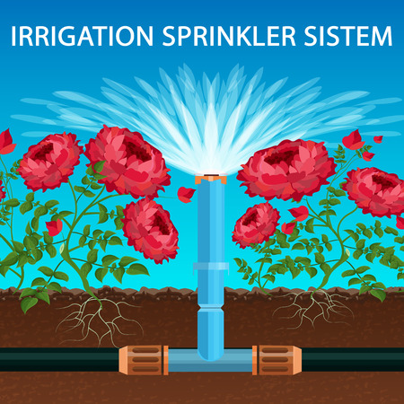 Vector Lettering Irrigation Sprinkler System. Water is Distributed through Pipe System. Equipment Sprays Water into Air and Irrigates Entire Surface Soil and Flowers through Spray Heads.