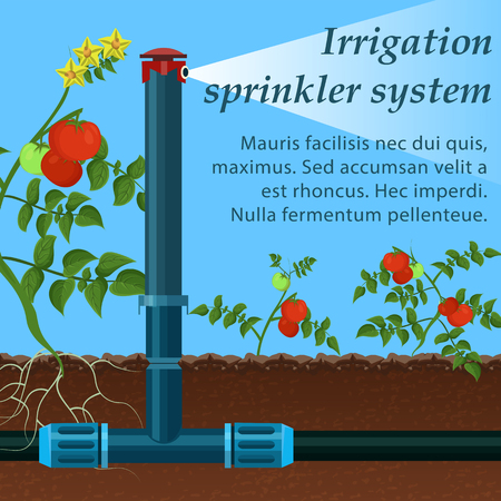 Banner Lettering Irrigation Sprinkler System. Device Adapted to all Irrigated Soils. Sprinklers are Available Wide Range Performance. Watering Tomato Device Saves Water by Combining High Quality.