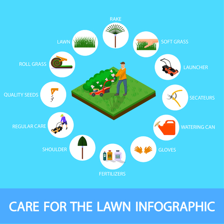 Banner Care for the Lawn Infographic Isometric. Man Mows Grass on Lawn Lawnmower. Vector Illustration Colored Background. Effective Tools and Chemicals for Lawn Care at Home, Flat.