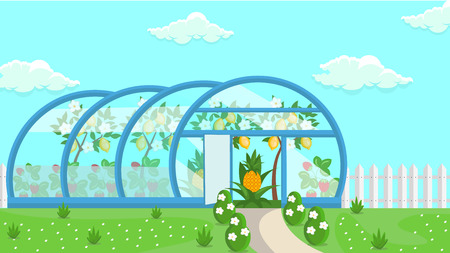 Greenhouse Tropical Fruit Cultivation Illustration. Flowers Nursery. Cartoon Botanical Garden. Lemon Trees and Pineapples in Small Hothouse. Clouds in Blue Sky. Seasonal Exotic Harvest