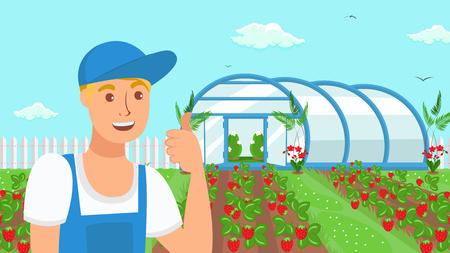 Farmer Growing Strawberries Vector Illustration. Berries and Fruits Summer Crop. Handyman Cartoon Character Showing Thumb Up Gesture. Horticulture. Seasonal Harvest Growing in Field, Garden