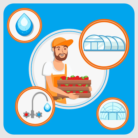 Strawberries Harvest Cultivation Flat Illustration. Farmer Cartoon Character Holding Wooden Container. Filtered and Tap Water Drop Vector Illustration. Glasshouse, Greenhouse in circles