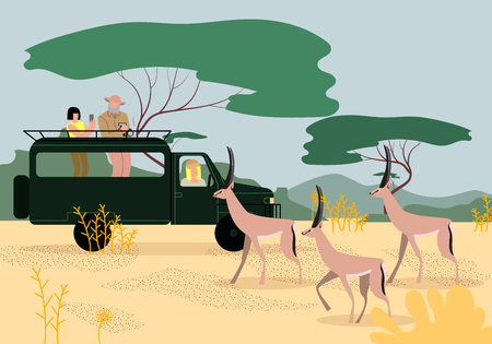 Uomo e donna turisti che guidano la jeep su un safari in Africa, viaggiano e osservano la fauna selvatica nella savana, fanno foto al telefono e alla fotocamera di bellissime gazzelle Piatto di vettore del fumetto.