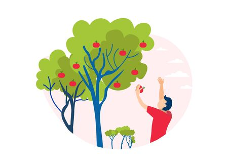 Man Picking Apple Tree Illustration. Eco Organic Products. Farm Harvest. Cartoon Male Gardener Character and Garden Ripe Fruit Plant. Healthy Nutrition. Agriculture. Farming and Harvesting Vector
