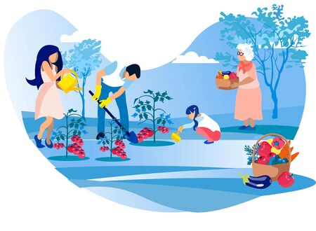 Happy Family Gardening, Mother, Father and Little Daughter Care of Vegetables, Watering and Picking Fresh Tomatoes, Helping Grandmother in Garden, Summer Time Vacation Cartoon Flat Vector Illustration
