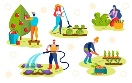 Farmers Caring of Plants Set. Male Characters Watering Eggplants, Pick Ripe Apples, Female Harvesting Vegetables in Garden.
