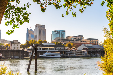 Sacramento's skyline and waterfront framed by tree branches, as seen from the banks of Sacramento river of a sunny morning; California Stock Photo
