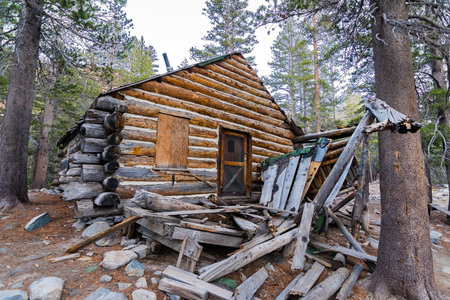 The ruins of an old wooden cabin in the woods of Eastern Sierra mountains, California Фото со стока