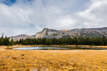 Alpine lake and meadow close to the Tioga Pass on a cloudy autumn day; mountain ridge visible in the background; Yosemite National Park, California