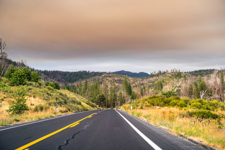 Driving through Yosemite National Park; filtered light due to the smoke coming from Ferguson Fire covering the sky, Caifornia