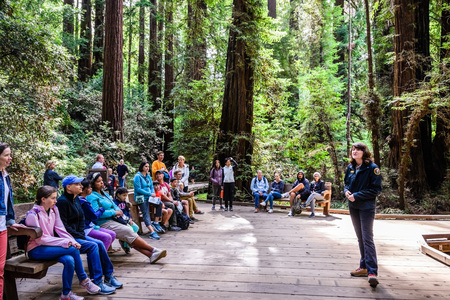 August 10, 2018 Mill Valley / CA / USA - Volunteer at the Muir Woods National Monument giving a presentation to a group of tourists on a wooden deck surrounded by redwood trees; Reklamní fotografie
