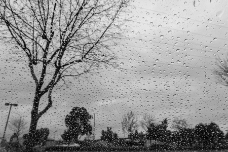 Drops of rain on the window; blurred trees in the background; shallow depth of field; black and white Banco de Imagens