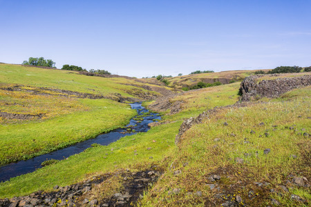 Seasonal creek running on the verdant plain of North Table Mountain Ecological Reserve, Oroville, California Stock fotó
