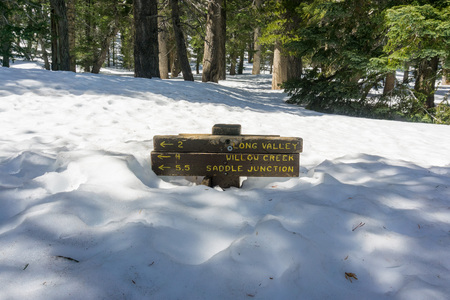 Trail sign almost buried in snow, Mount San Jacinto State Park, California