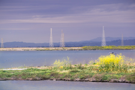 The sun illuminates the wild mustard growing on a levee and the electricity towers on a cloudy and stormy day, Sunnyvale, San Francisco bay area, California