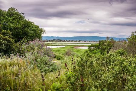 Cloudy spring day at Don Edwards Wildlife Refuge, south San Francisco bay, Alviso, San Jose, California Stock fotó