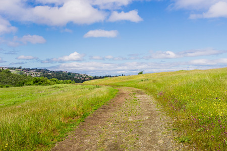 Hiking trail on the verdant hills on Edgewood County Park, San Francisco bay, California Stock Photo