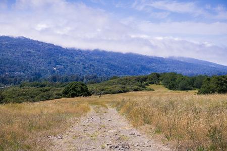 Hiking trail through grasslands, San Francisco bay area, California Stock fotó
