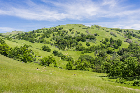 Sunol Regional Wilderness, San Francisco bay area, California