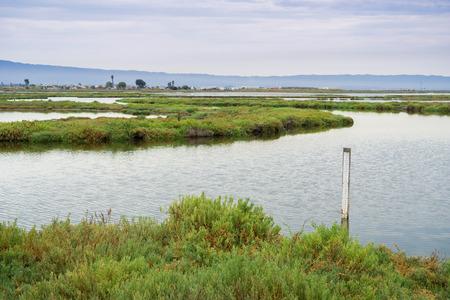 Wetlands in Alviso Marsh, south San Francisco bay, California Stock fotó