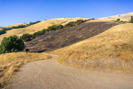Burned grass area on the golden hills of Mission Peak preserve, south San Francisco bay, California