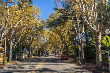 Strada alberata in un quartiere residenziale in una soleggiata giornata autunnale, Oakland, la baia di San Francisco, California Archivio Fotografico