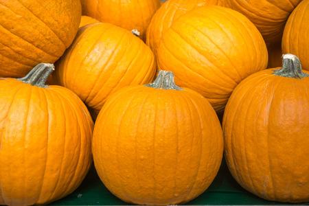 Ripe orange pumpkins for sale; seasonal display; Halloween, Thanksgiving, California, California