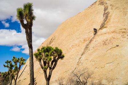 Rock climbing in Joshua Tree National Park, California 스톡 콘텐츠