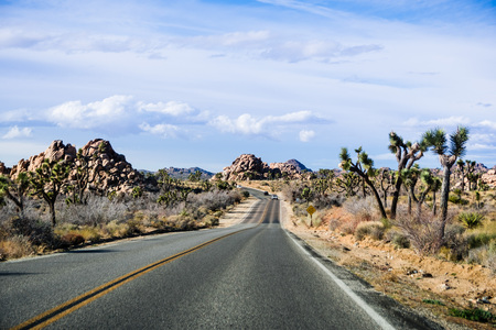 Driving on a paved road in Joshua Tree National Park, south California Stock Photo