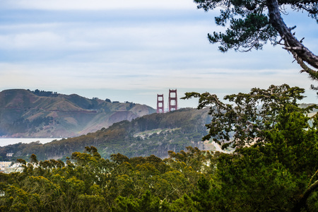 View towards the cypress forests of Presidio Park on a cloudy day; Golden Gate and Marin Headlands visible in the background; San Francisco, California